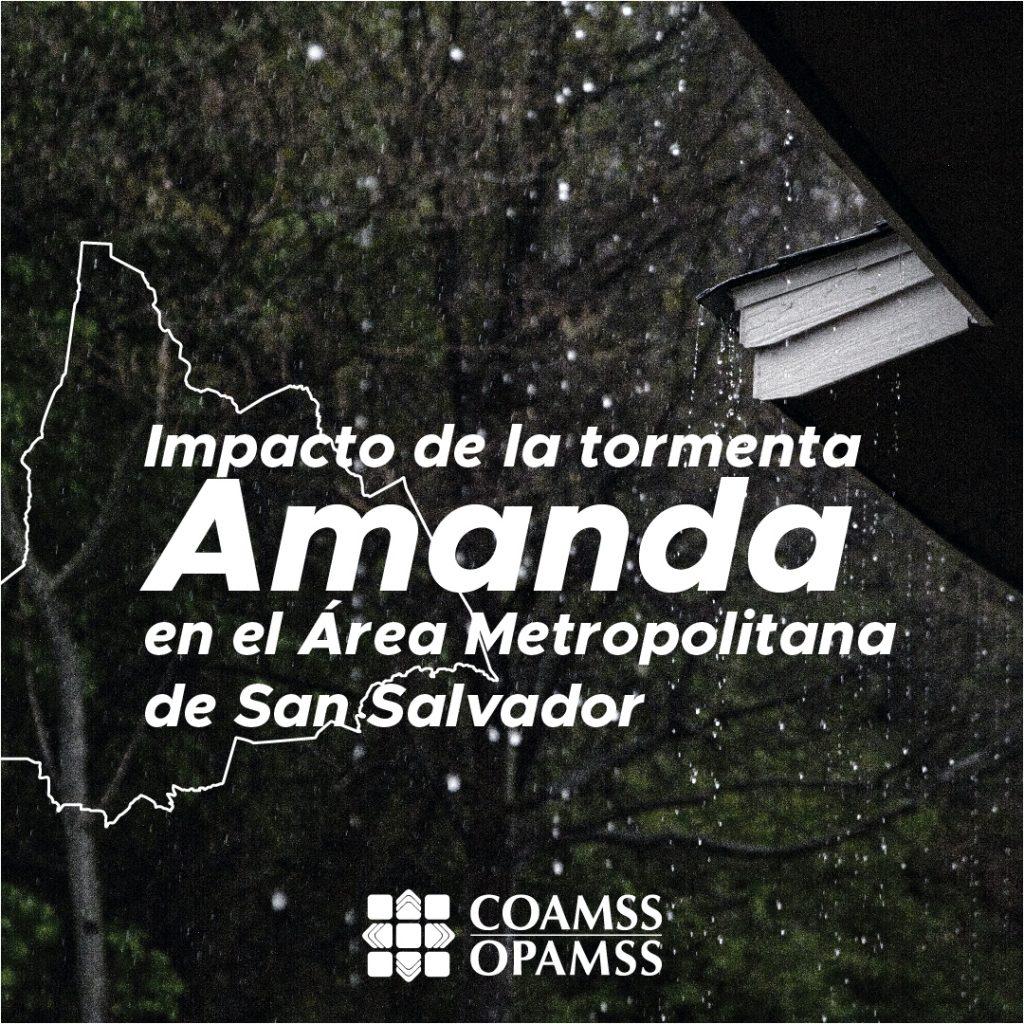 Amanda_Mesa de trabajo 1